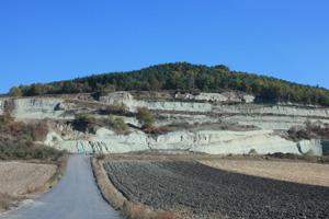 クレイ採掘地